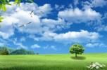 Про атмосферне повітря та його стан